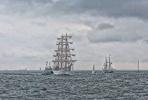 Tall Ships van