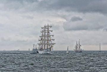 Tall Ships sur D. Henriquez
