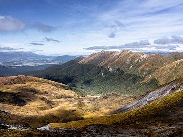 Neuseeland - Te Anau - Die Baumgrenze auf den Bergketten des Fiordland Nationalparks von Rik Pijnenburg