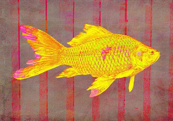 Gold Fish on Striped Background von mimulux patricia no