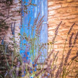 doorkijk met lavendel van Tonny Visser-Vink