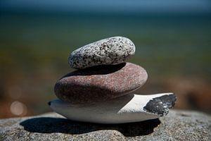 evenwicht van
