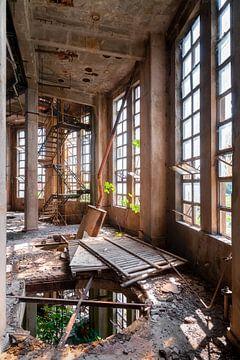 Industriële Toren in Verval. van Roman Robroek