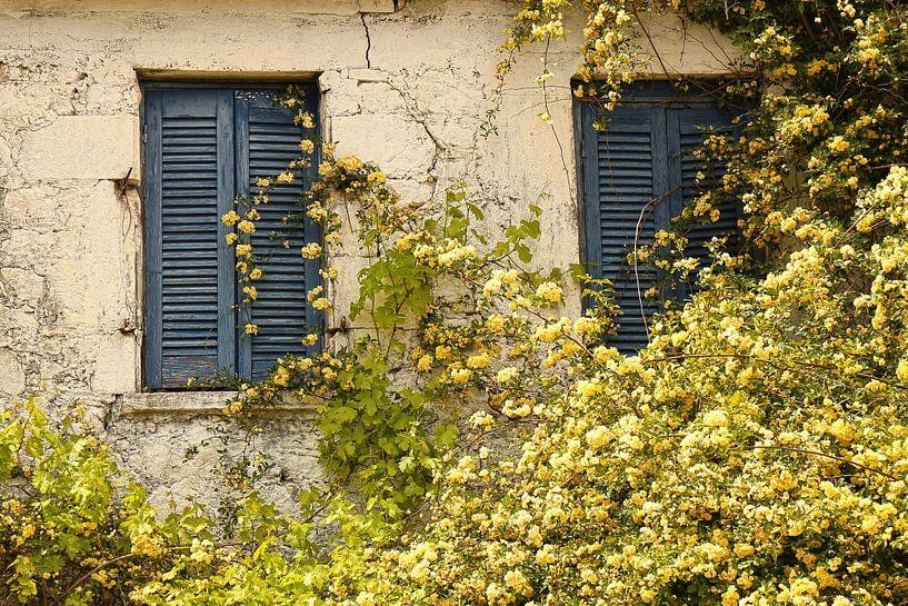De blauwe brocante louvredeuren van Shot it fotografie