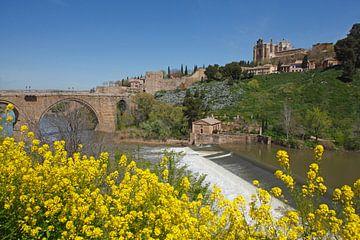 Puente de San Martin, Brücke, Fluss Tajo, Altstadt,  Brücke, Frühling, Toledo
