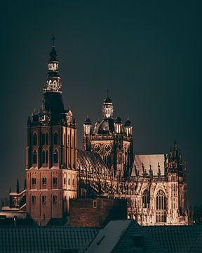 Sint-Janskathedraal van Bas Glaap