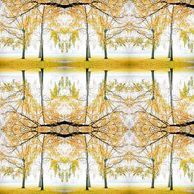 Herfstsfeer van Rob van der Pijll
