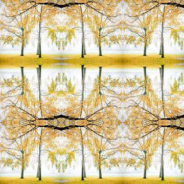 Atmosphère d'automne sur Rob van der Pijll