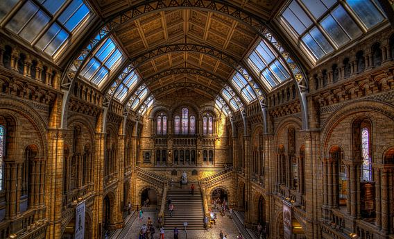 Natural History Museum London van Rene Ladenius
