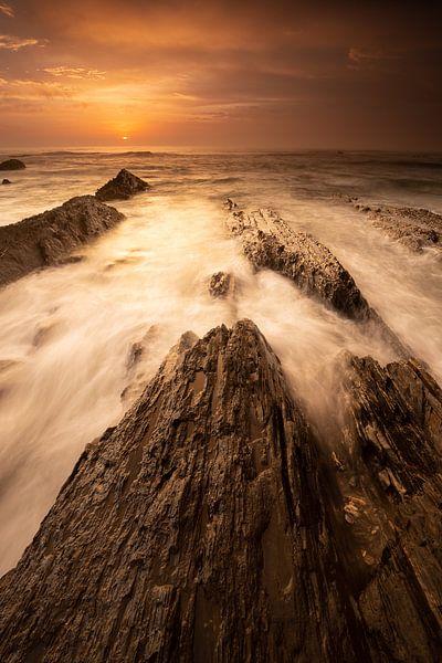 Golden Light van Rob Christiaans