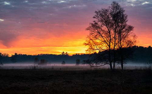 Coucher de soleil d'automne avec un faible brouillard sur le Wasmeer d'Hilversum