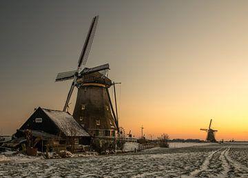 Niederländische Ikonen! von Robert Kok
