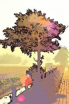 Baum im Gegenlicht von Fons Baardman