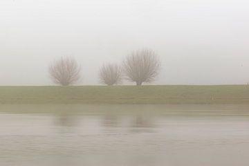 trio in de mist van Tania Perneel