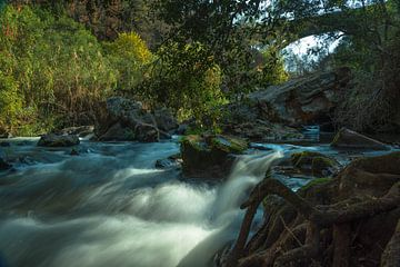 rivier zuid afrika van Niels Aben