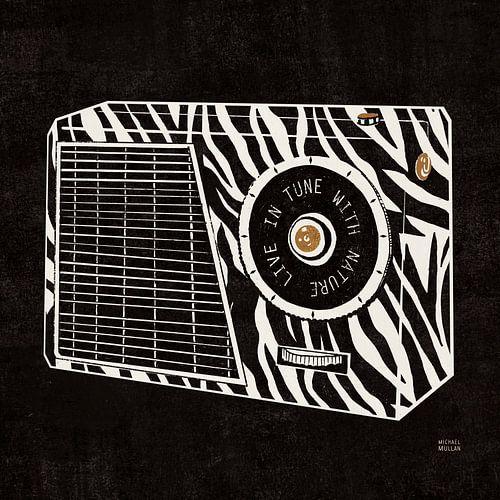 Analoge jungle-radio, Michael Mullan