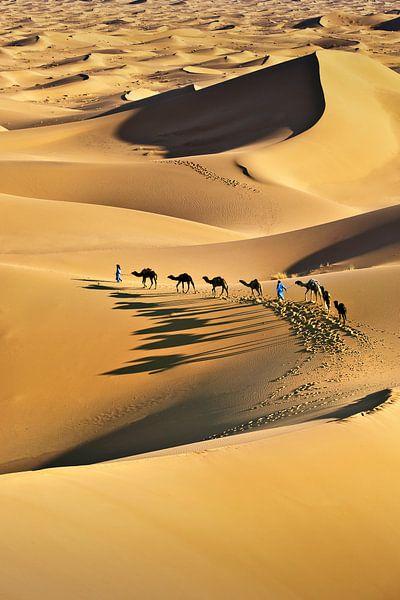 Désert du Sahara, caravane de chameaux et chameliers sur Frans Lemmens