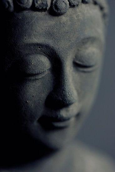 Buddha van Falko Follert