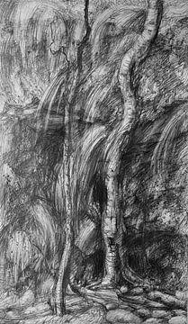 Zwart wit Bos van KB Prints