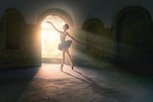 Magisches Licht Tanz