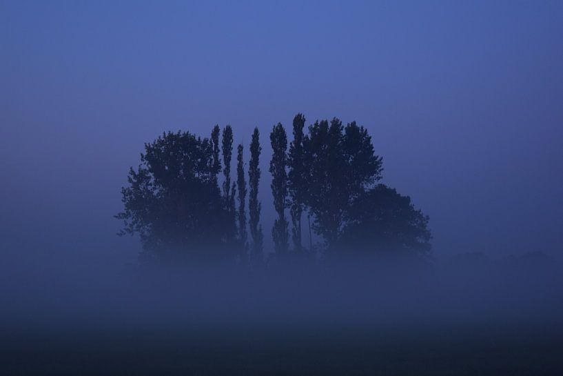 Blue Tree van Johanna Varner