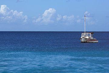 Zee met schip op Curacao van Discover Dutch Nature