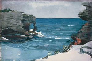 Winslow Homer-Rocky Shore, Bermuda