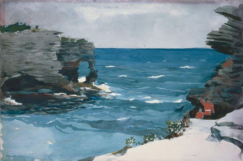 Winslow Homer-Rocky Shore, Bermuda von finemasterpiece