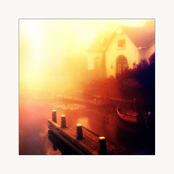 Into the light van Pim Feijen