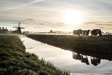 Typisch hollands von Cornelis Bezema