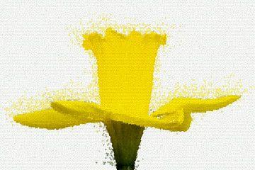Daffodil mozaïek van Marion Tenbergen