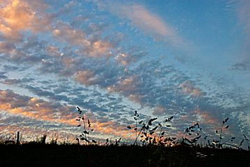 Avond lucht in de Ardennen von Anne Meyer