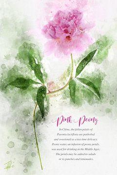 Roze Pioenroos van Theodor Decker
