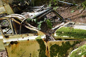 Abandonned car 3 van Nancy Lamers