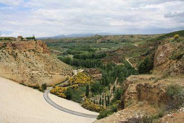 Andalusië - landschap bij stuwmeer van Lisette Tegelberg - Zegwaard