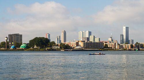 De skyline van Rotterdam met roeiers