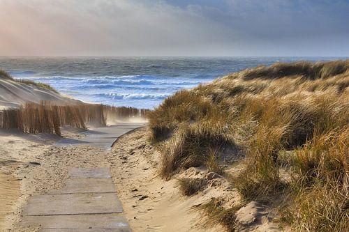 Hollands duinlandschap met storm van