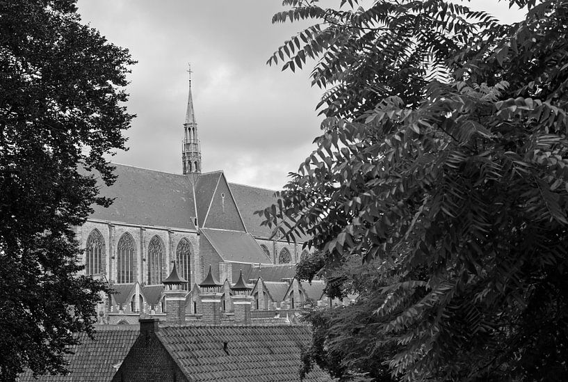 Hooglandse kerk in Leiden van Simone Meijer