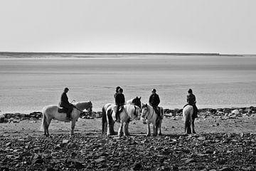 Paardrijden van Jerke Taeymans