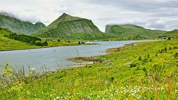 Sundstraumen - grüne Idylle in Norwegen von Gisela Scheffbuch