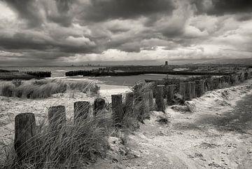Entlang der Zeeuws-flämischen Küste. von Ellen Driesse