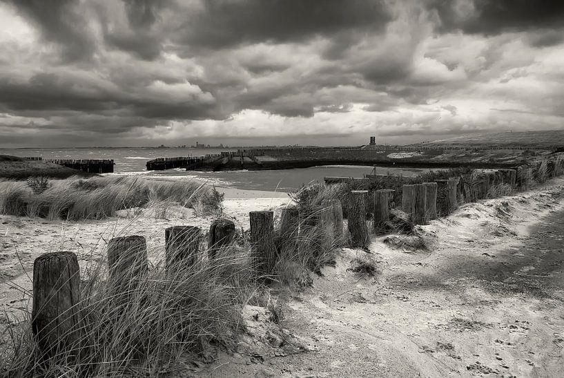 Langs de Zeeuws-Vlaamse kust. van Ellen Driesse