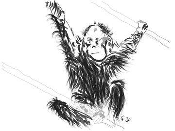 Orang-Utan Baby 1 von Go van Kampen