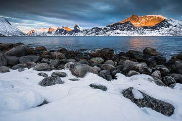 Sneeuwlandschap in Senja / Lofoten, Noorwegen von Martijn Smeets