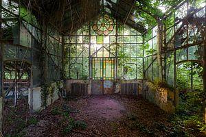 Hortus Botanicus ( Greenhouse) van Jeroen Kenis
