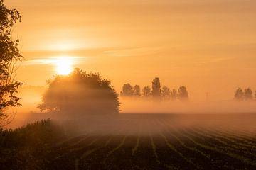 ländliche Atmosphäre von Tania Perneel