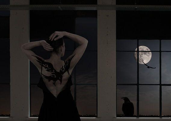 The moon asked the crow van Jenny de Groot