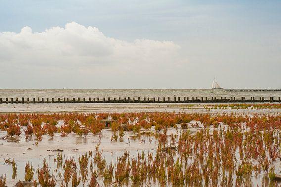 Waddenzee Ameland van Margreet Frowijn