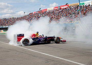 Formule 1 burnout! van Thijs Schouten