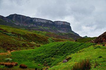 Schotse Hooglanden van Ineke Huizing
